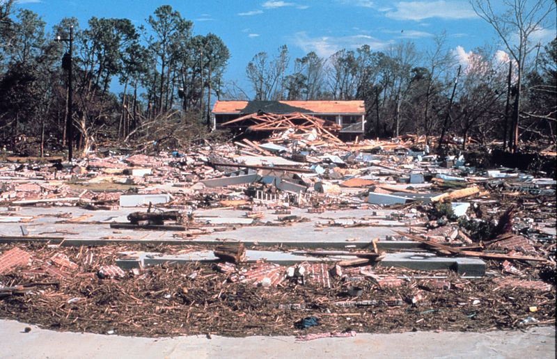 Specialty Program Solutions (SPS) - How are Hurricanes Affecting Lumber Prices - Hurricane Destruction Image